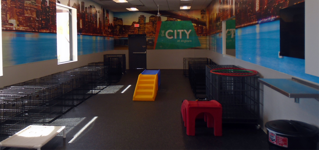 Dog crates line the walls of a play area at one of Tri-North's Dogtopia projects.