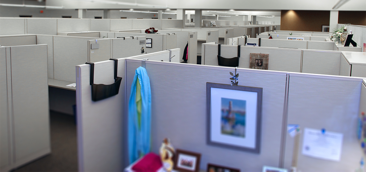Cubicles and work stations inside the UW Health Administration Office in Wisconsin a Tri-North Builders project.
